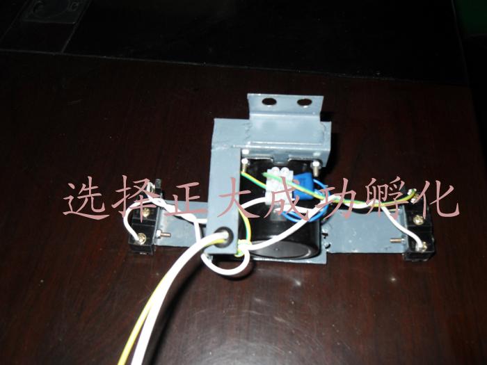 小型翻蛋电机.