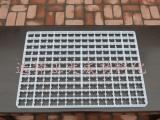 176枚强塑土鸡蛋盘.